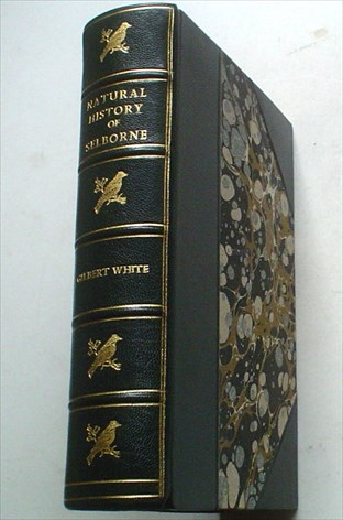 THE NATURAL HISTORY OF SELBORNE. Edited with notes by Grant Allen. WHITE. GILBERT., NEW. EDMUND. H. Illustrates.