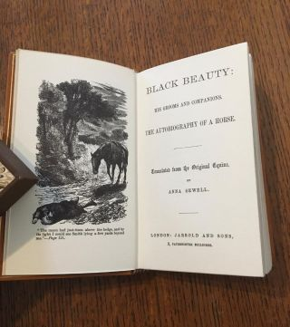 BLACK BEAUTY. His Grooms and Companions. The autobiography of a Horse. Translated from the original Equine by Anna Sewell.